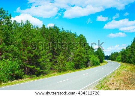 Empty road in the forest in a bright sunny day - stock photo