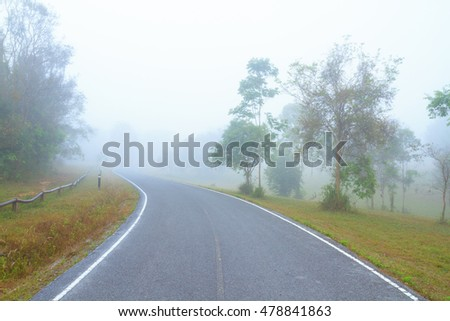 Empty road in the misty forest.