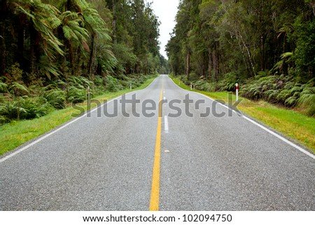 Empty road stretching out into the distance in New Zealand Forest - stock photo