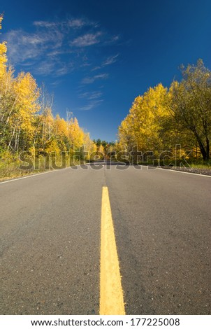 Empty road through autumn forest, Minnesota