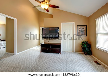 Empty room with vaulted ceiling and carpet floor. Furnished with TV and cabinet. Room decorated with green fake plant in the corner and wall pictures