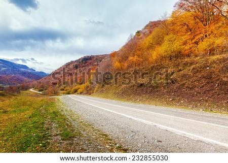 Empty rural asphalt road in autumn with colored trees in Arkhyz, Karachay-Cherkessia, Russia - stock photo