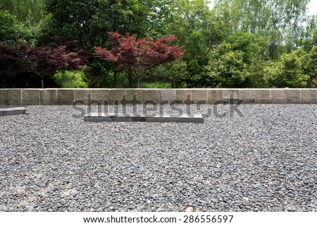 Empty sandstone ground in park with plant