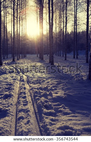 Empty ski tracks in the middle of the forest. Image taken during sunset on a snowy forest. Image has a vintage effect applied. - stock photo