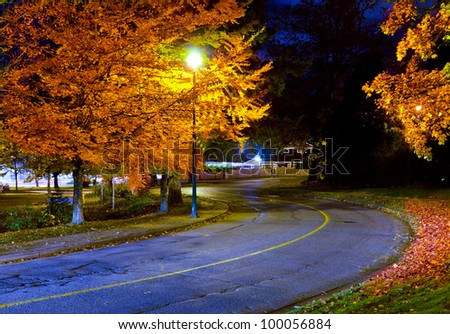 Empty street in a night time with some autumn trees - stock photo
