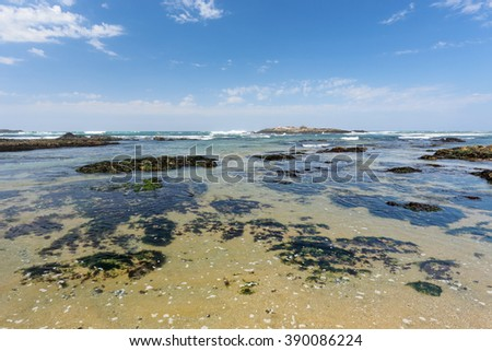 Empty sunny sea  beach during low tide against beautiful blue sky - stock photo