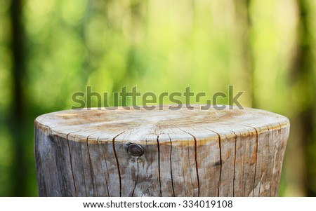 Empty tree trunk for display montags - stock photo