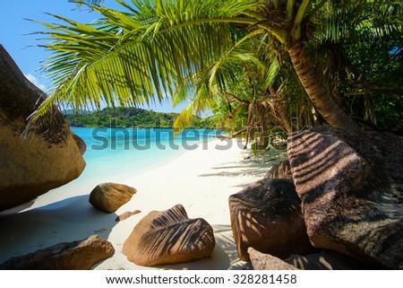Empty tropical beach - stock photo
