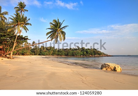 Empty tropical beach with coconut palms  and big stone, Bintan Island, Indonesia.