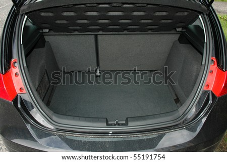 Empty trunk of the car