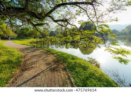 Empty walk path next to beautiful Lake Garden with Reflection