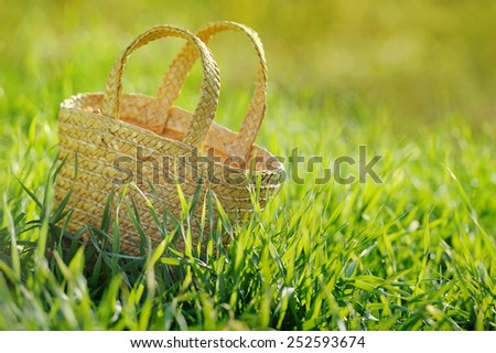 Empty wicker basket In fresh green grass outdoor - stock photo