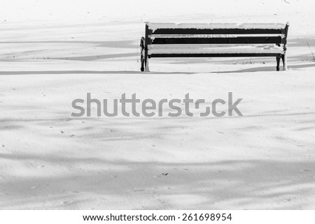 Empty wooden bench - winter. - stock photo