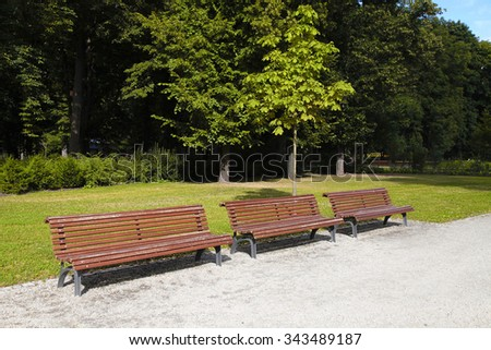 empty wooden park bench at the summer park, selective focus
