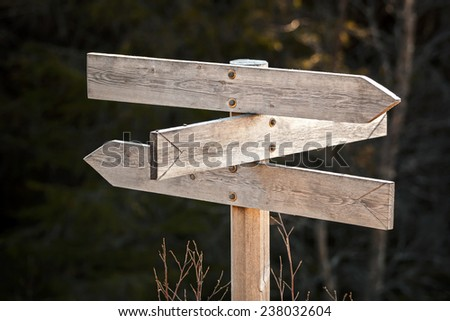 Empty wooden road sign in a dark forest  - stock photo