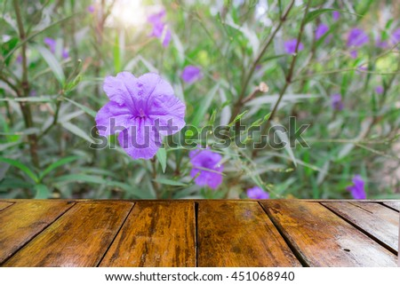 empty wooden table and purple ruellias , wild petunias