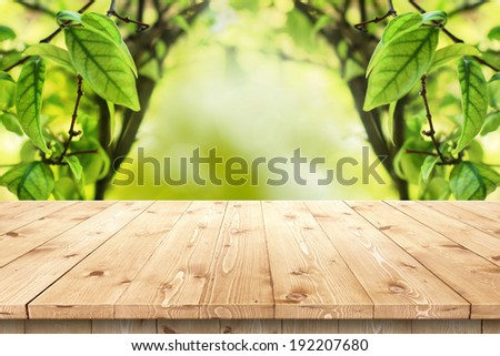 Empty wooden table in a sun drenched summer garden for product placement or montage with focus to the table top in the foreground, with summer bokeh background. - stock photo