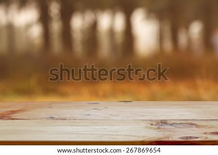 Empty wooden table in spring garden - stock photo