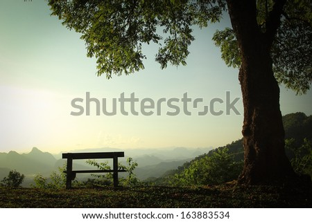 Emtry Wood chair  in the outside. - stock photo