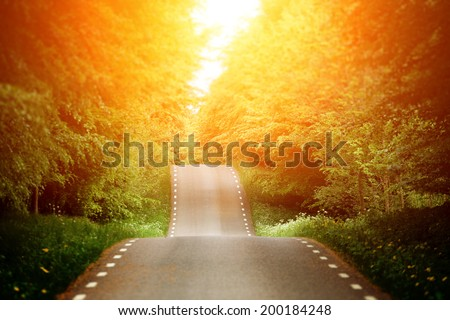 Emty country-road - stock photo