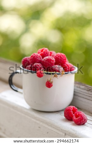 enamel vintage cup full of raspberries, summer taste