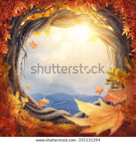 Enchanted dark forest at the fall - stock photo