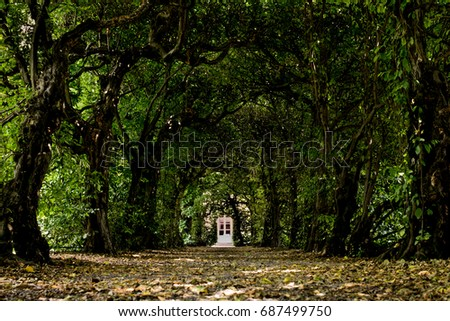 enchanted door in a tunnel of trees magical ambient and scene & Enchanted Stock Images Royalty-Free Images \u0026 Vectors | Shutterstock Pezcame.Com