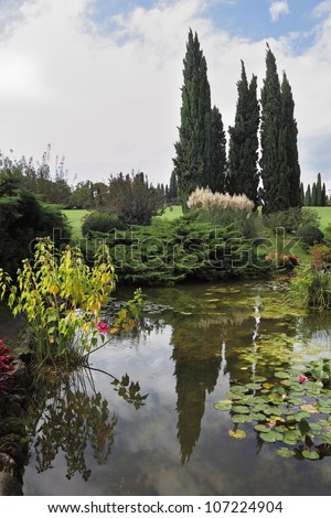 Enchantingly beautiful park-garden Sigurta. Shallow pond, cypress and lily - stock photo