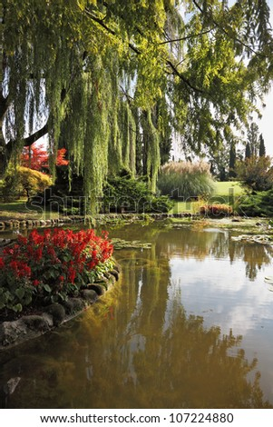 Enchantingly beautiful park-garden Sigurta. Shallow pond, weeping willow and a flowerbed of red flowers. Northern Italy