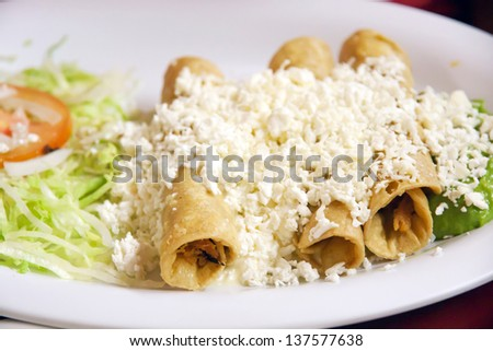 Enchiladas with cheese,beans and vegetables  - stock photo