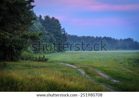 end of the day at the edge of the wood - stock photo
