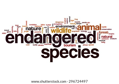 Endangered Animals Stock Images Royalty Free Images Vectors Shutterstock
