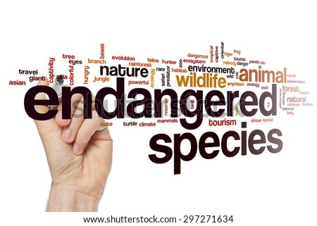 Endangered species word cloud - stock photo