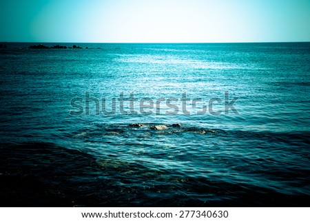 Endless blue sea. Beautiful nature. Toned. - stock photo