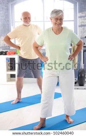 Energetic elderly couple doing exercises in the gym. - stock photo