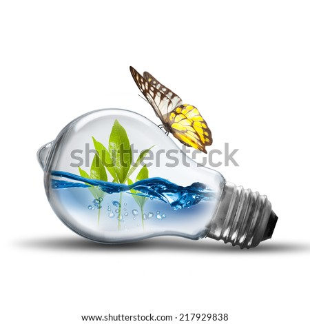 Energy concept. Light bulb with water and plant inside and butterfly - stock photo