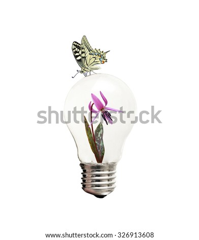 Energy saving concept by a butterfly sitting on a bulb in which a flower is growing - stock photo