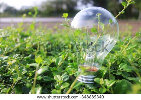 Energy saving concept. light bulb on green leaf background. - stock photo