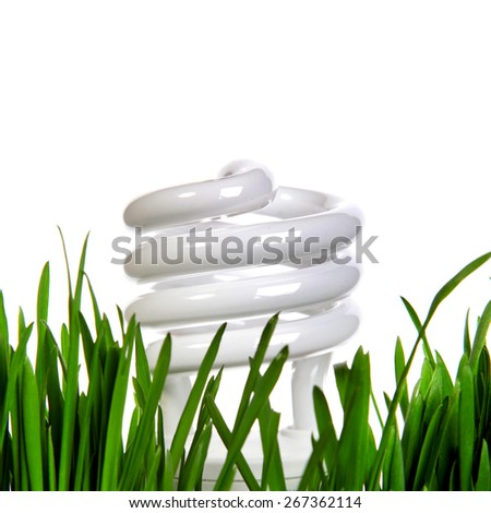 Energy saving Lamp in the Grass on the White Background - stock photo