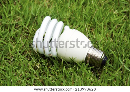 Energy saving light bulb with grass in the background. - stock photo