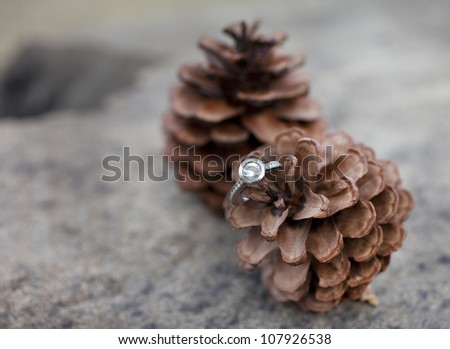 Engagement Theme - Diamond Ring on pine cones - stock photo