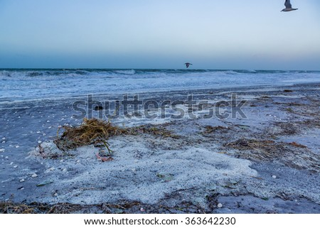 Englewood Beach in Florida covered in debris after Nino caused storm - stock photo