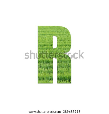 English alphabet from green leaf or grass field texture on white background for education or business presentation