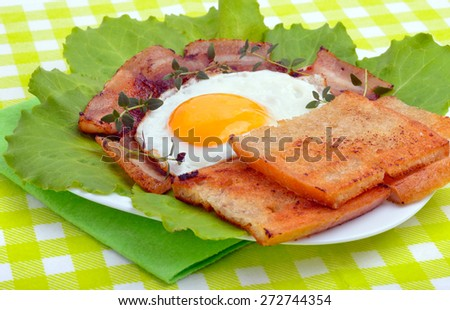 English breakfast -  egg, toast, bacon and vegetables on a green napkin - stock photo
