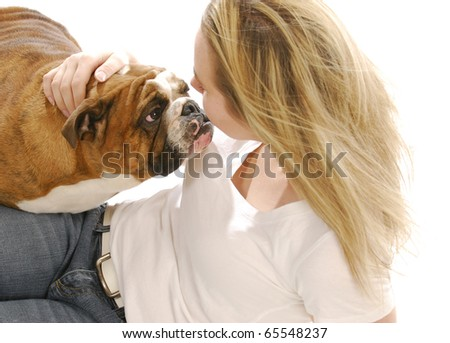 english bulldog being loved by attractive young woman on white background