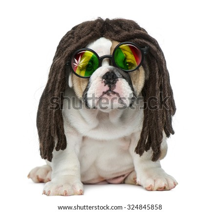Dreadlocks Stock Photos Images Amp Pictures Shutterstock