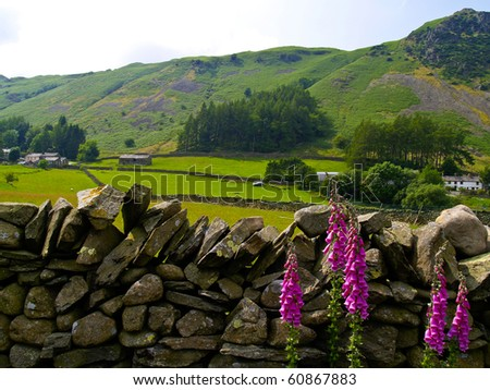 English Countryside. - stock photo