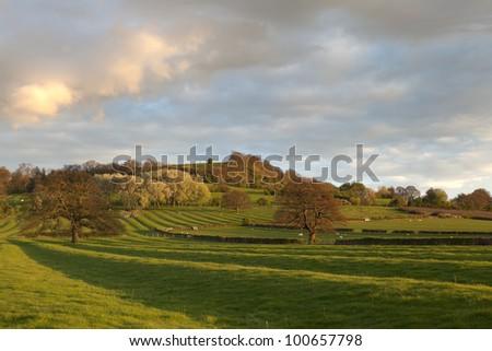 English countryside at sunset - stock photo