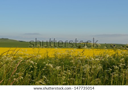 English Countryside Summer Landscape View - stock photo