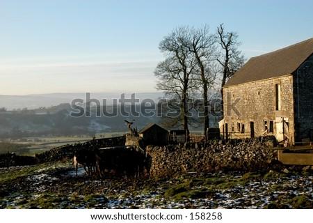 English Farm - stock photo